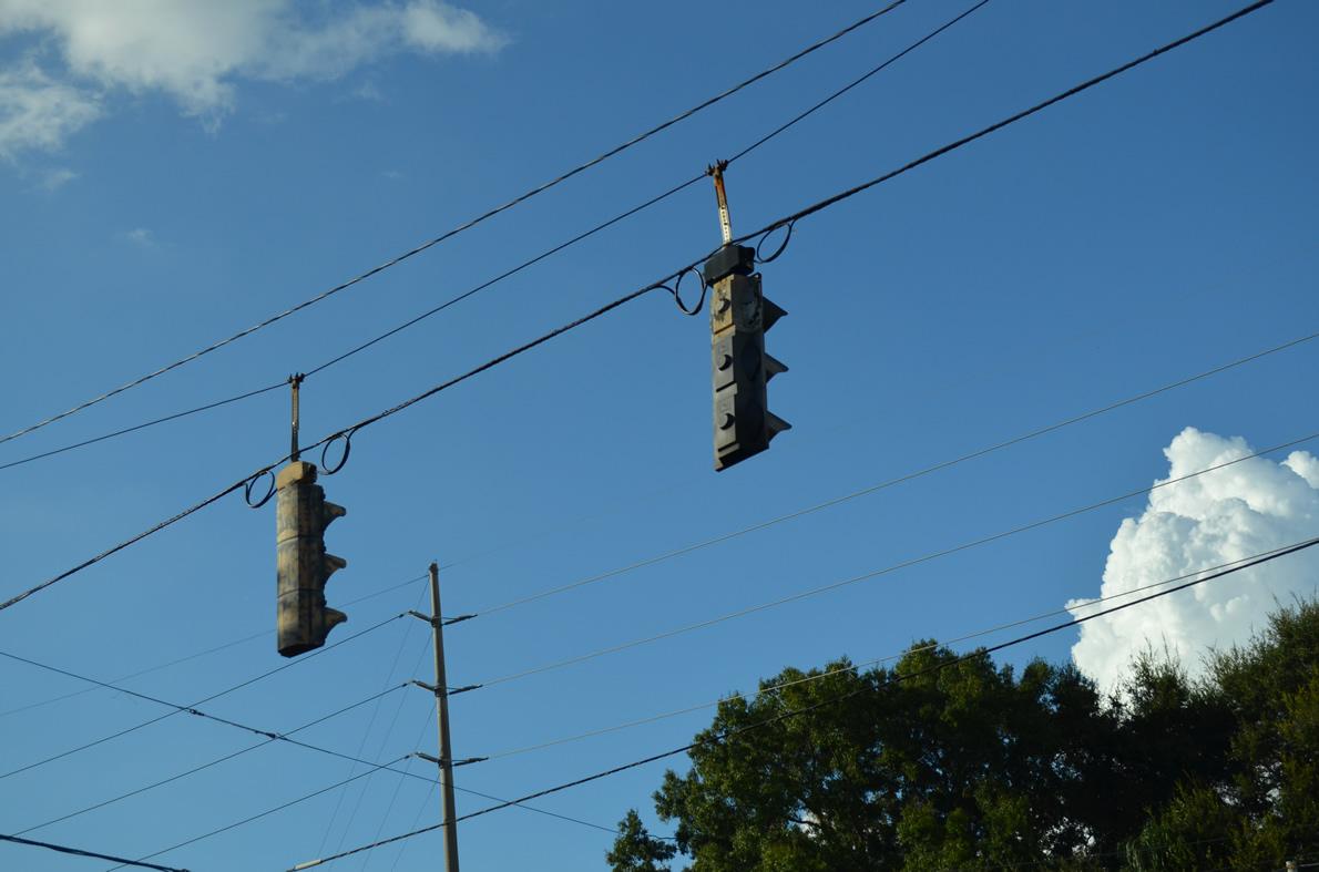 Eagle Flatback - Ybor City, Tampa, Florida