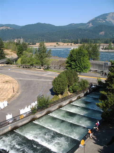 Pacific Northwest Roadtrip - Day 3 (Cascade Locks to Seattle) - AARoads