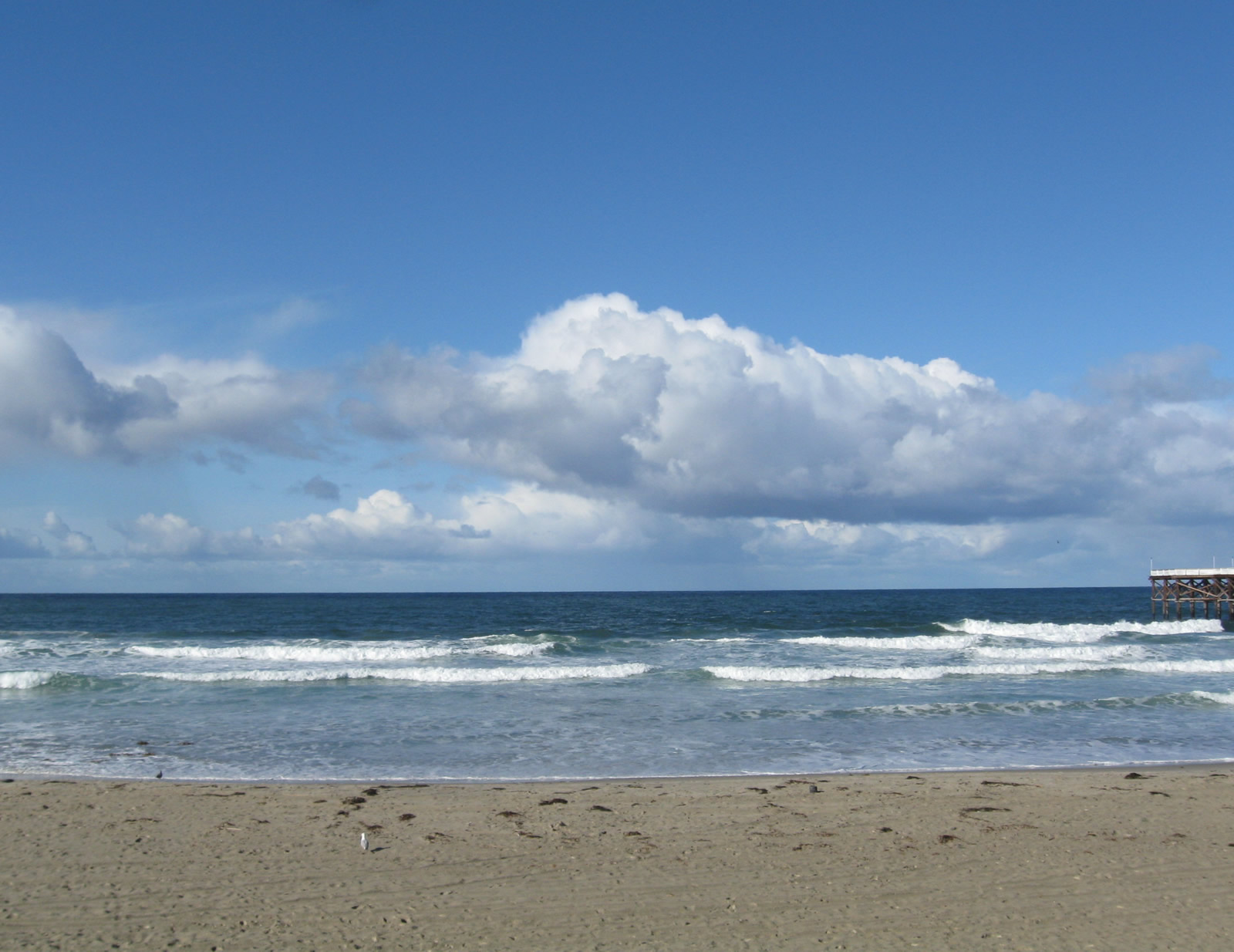 Pacific beach san diego dating