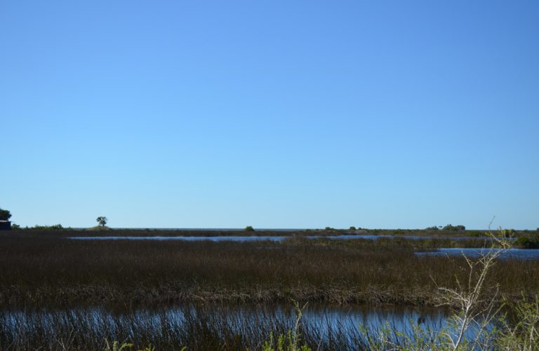CR 495 at Rock Island Bay